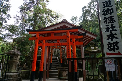 Inari Shrine in the woods with Torii