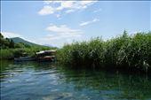 Marsh near the end of the main boardwalk, Ohrid: by krodin, Views[117]