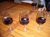 Look, swirl, smell and taste the wine - or if you are Malc, just slug it back! ha!: by krysia, Views[154]