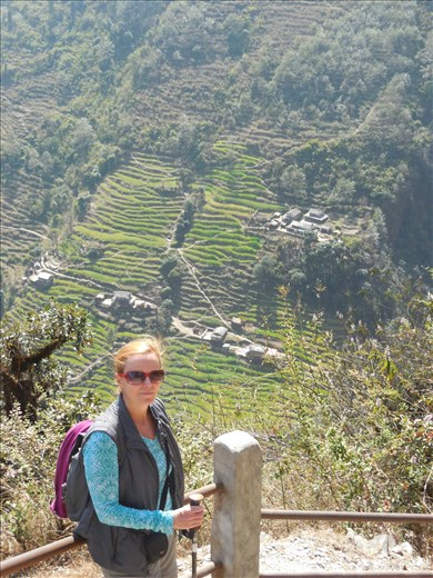 The spectacular farmland the Nepalese people have carved out of the mountains.