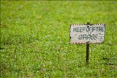 A way to preserve nature: The 'keep off the grass' sign displays a clear instruction to preserve the pure and clean lawn. : by kurt_barcelona, Views[615]