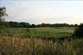Bird Reservation: by l-a-u-r-e-n, Views[144]
