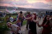 Festival goers blow bubbles in the glow of the early new-years dawn: by lachlang, Views[999]