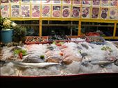these fresh fish boothes are everywhere...you pick your fish and they cook it up: by laina333, Views[225]
