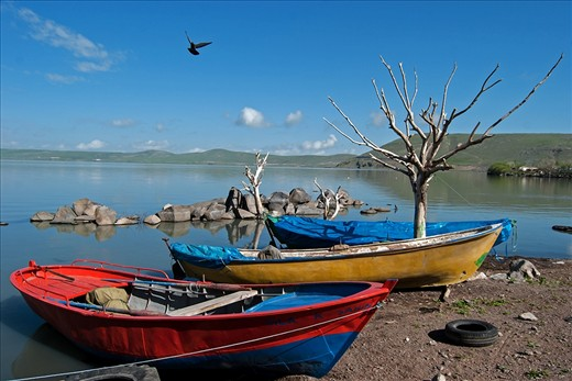 Boats are waiting to go fishing in the morning at the shores of the lake. Fishermen must compete with birds for  their catch.