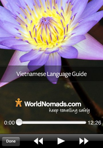A screenshot from our Vietnamese language guide