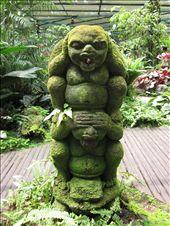 Monkey Magic @ Botanical Gardens: by lani, Views[437]