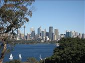 Sydney from Taronga Zoo: by laurentravels08, Views[218]