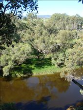 The Swan River starts off very narrow up in the Swan Valley compared to its huge width in Perth, where it looks more like a lake before it empties into the Indian Ocean.: by leah, Views[175]