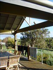 kookaburra watching over us.: by leah, Views[153]