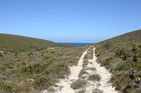 the sketchy (and possibly snaked-filled) trek to Two Bays