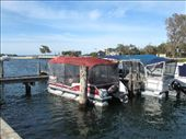bass tracker pontoons in Oz! : by leah, Views[234]