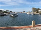 a tiny marina in the estuary in mandurah: by leah, Views[224]