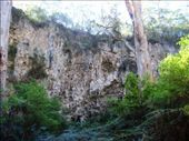 walking down into the entrance to Giants Cave: by leah, Views[376]