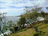 A view of Dolphin Point in the distance from the path in Noosa National Park: by leah, Views[482]
