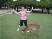 leah and deer: by leah25, Views[239]