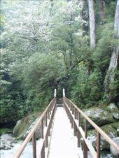 yakushima: by leah25, Views[171]