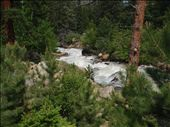 Fall River near the campground: by leebowie, Views[106]