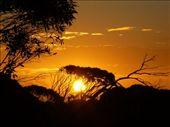 sunset at laura bay: by lena, Views[300]