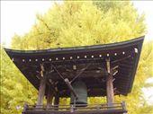 No Templo de Hida Kokubun-ji: by leo, Views[390]