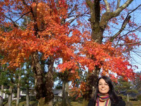 Viva o outono!
