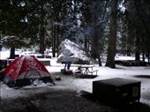 Our camp site in Yosemite.: by les, Views[196]