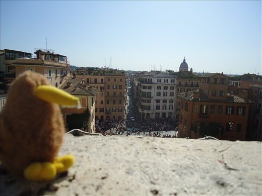 Kingi at the top of the Spanish Steps