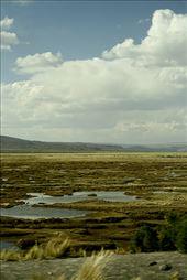 Hacia rutas salvajes: by lifeontheamazon, Views[116]