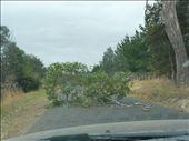 something on the road: by ligia-richard, Views[131]