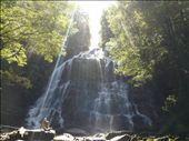 Nelson Falls: by ligia-richard, Views[253]