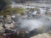 Hot pool in someones garden!: by lijanne13, Views[238]