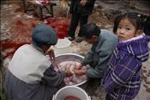 With no brothers, 8-year-old Mei Mei is the first female in the family to be taught how to butcher. First step is gutting and cleaning the endless yards of the pig's intestines.: by lilychenggg, Views[835]