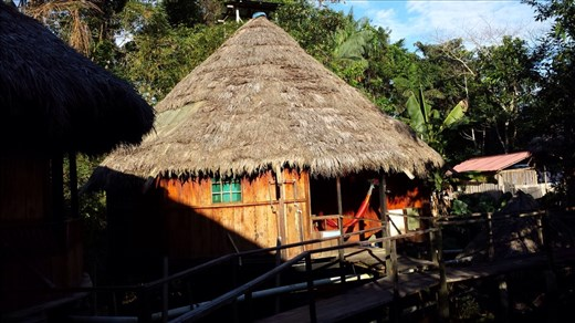 Hut w/ hammock