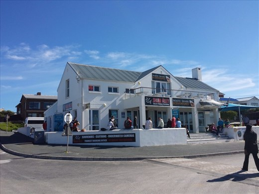 Shark office