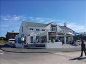 Shark office: by lipowcan8, Views[198]