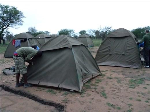 My tent, pretty basic