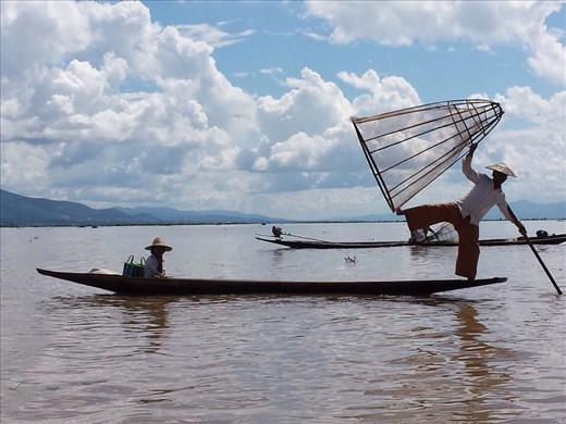 Inle Lake. To catch fish, he quickly puts cone cage in shallow water trapping fish. Then uses a spear inserted through the top of the cone to kill fish.