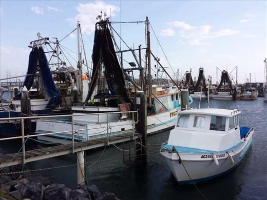 Coffs Harbor, fishing is still a viable profession