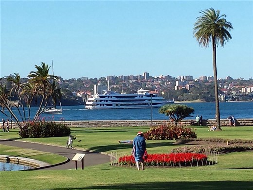 National Botanical Garden adjacent to the opera house. Very nice, lots of trails and views of Sydney harbor