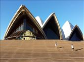 Another picture of the opera house: by lipowcan8, Views[82]