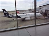 NZ Airlines , basic service, they wanted $3. for a soft drink.flew from Cains Australia to Sydney to Christchurch NZ: by lipowcan8, Views[77]