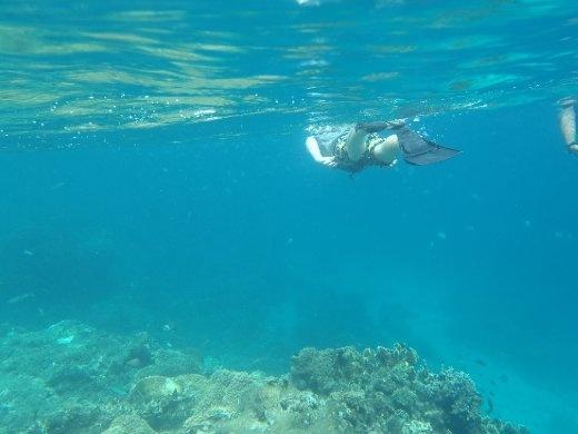 Snorkeling, Pemuteran Bali