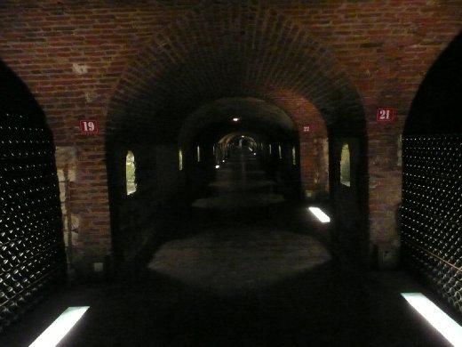 The cellars...there are like a million kilometers of these....well 121 or somehthing!