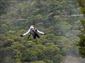 Katelyn Kennon soars over the rain forest canopy, ziplining in Monteverde.: by lizzieaton, Views[171]