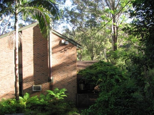 Wendy and Alan's house in the bush, in Wahroonga.