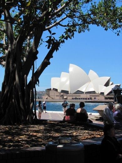 The Opera House from the park
