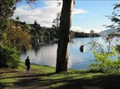 Greg heading down to Acacia Bay - a pearl in the oyster of Taupo.: by locomocean, Views[209]