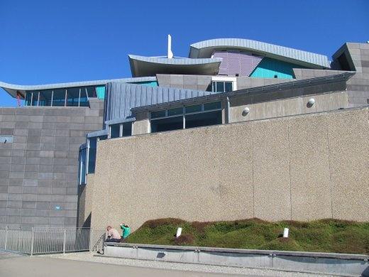Wellington's museum Te Papa