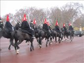 The Queen's Horsed Guards, putting on a display for us.: by locomocean, Views[98]