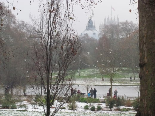 View of St Paul's Dome through snowy St James' Park